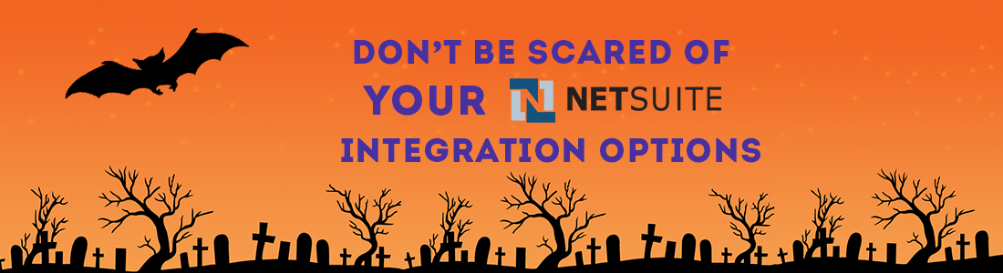 Don't be Scared of your NetSuite Integration Options | Big