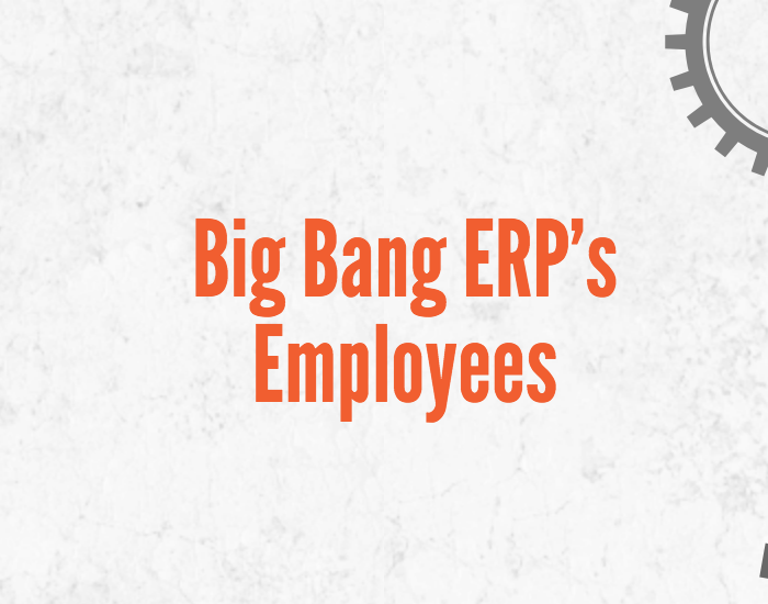 Fun Facts About Big Bang ERP's Team