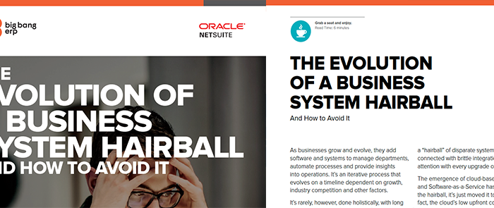 NetSuite: The Evolution of a Business System Hairball and How to Avoid it