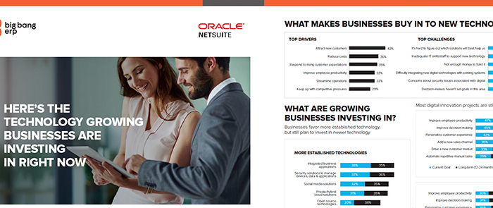 NetSuite: Technology in Growing Businesses
