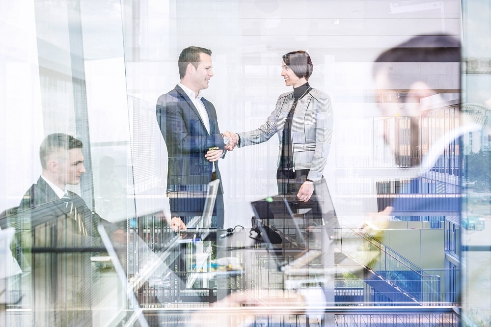 What does an erp consultant do?