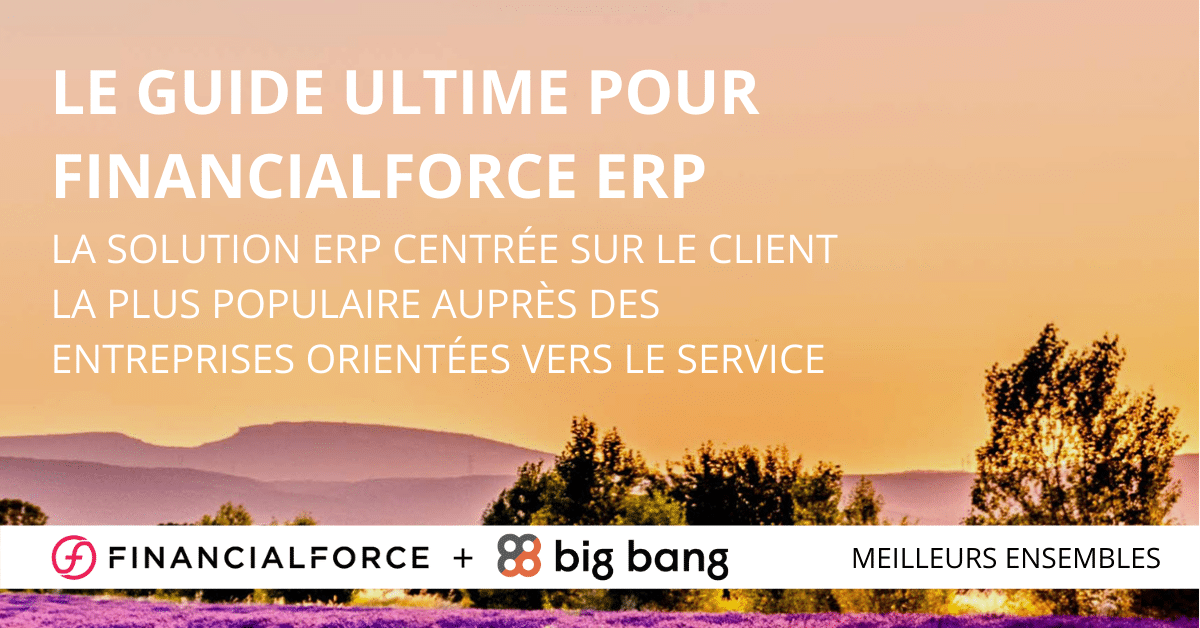 Le guide ultime pour FinancialForce ERP