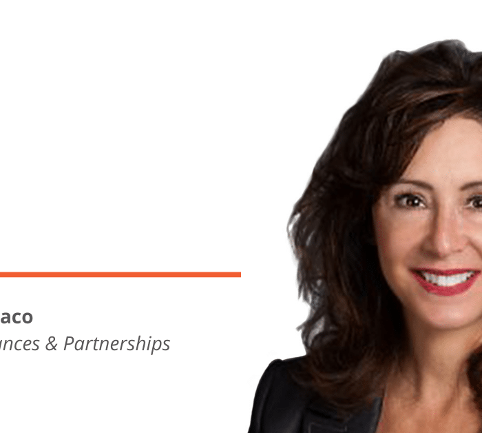 New Big Bang Director of Alliances & Partnerships Suzanne Monaco, Brings FORCE.com ISV Partner Experience